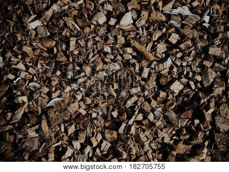 Many brown dried path texture