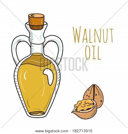 Colorful hand drawn walnut oil bottle. Isolated cute decanter with food oil and walnuts. Sketchy cartoon illustration for aroma therapy, cosmetic, organic shop. Glass jug with cork.