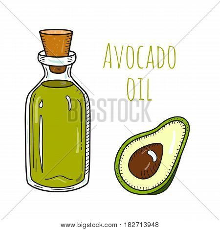 Colorful hand drawn avocado oil bottle. Isolated cute vial with healthy cooking oil and avocado. Sketchy cartoon illustration for aroma therapy, cosmetic, restaurant, organic shop. Glass jug and cork