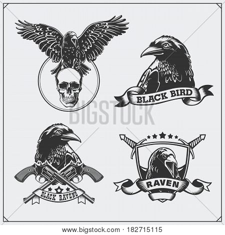 Raven heraldry coat of arms. Labels, emblems and design elements for sport club.