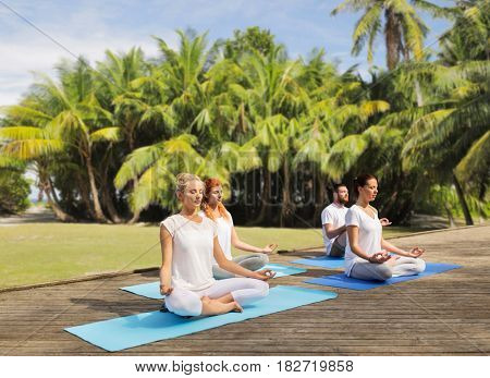 fitness, sport, yoga and healthy lifestyle concept - group of people meditating in lotus pose over exotic natural background with palm trees