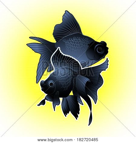 Graphic couple of telescope fish isolated on bright yellow background. Vector freshwater creature. T-shirt print or tattoo design