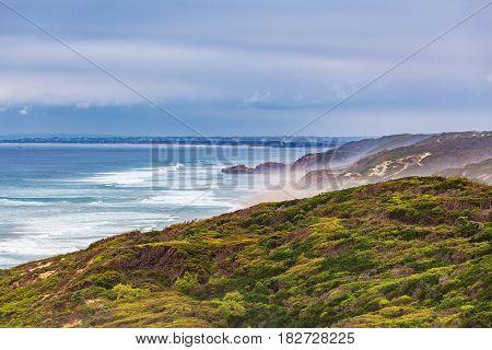 Ocean Coastline Landscape With Coastal Vegetation And Breaking Waves.