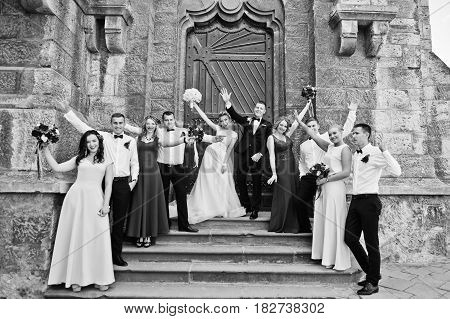 Elegance Wedding Couple With Bridesmaids And Best Mans. Crowd Of Friends On Wedding. Ten People.