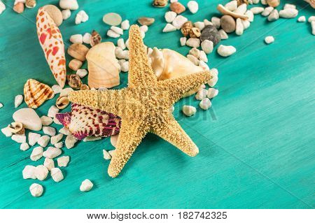 A photo of a sea star, sea shells, and pebbles on a vibrant turquoise background, a design template for a summer vacation banner