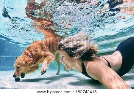 Underwater action. Smiley woman play with fun training golden retriever puppy in swimming pool - jump and dive. Active water games with family pet popular dog breed like companion on summer vacation