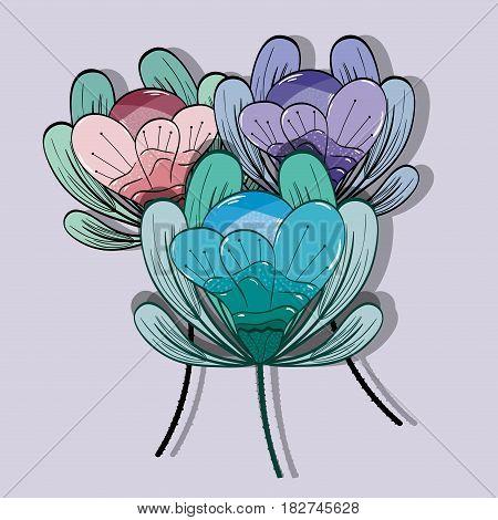 beautiful petals flowers herbal botany, vector illustration