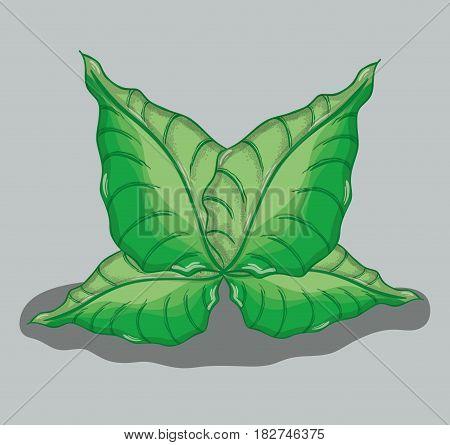 green nice plants decoration botany, vector illustration