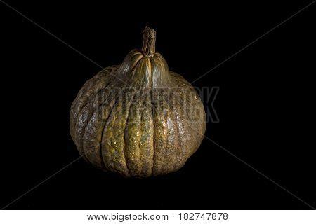 Single Whole Pumpkin