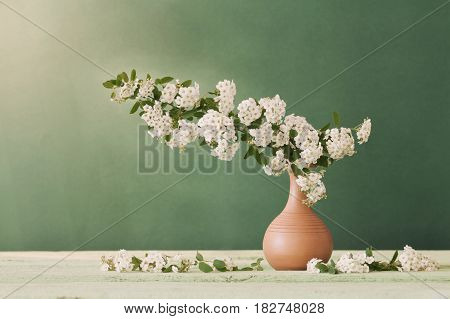 the still life with white flowers on green background