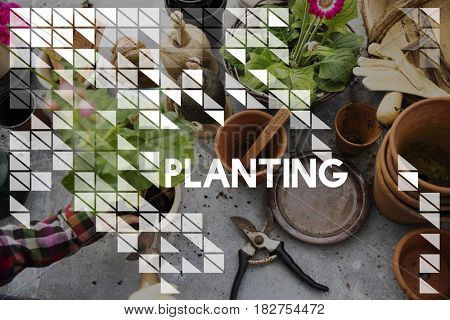 Planting word on plants background