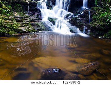 Pooling water under a water fall in spring sunlight