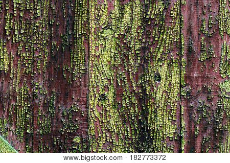 Painted Old Wooden Wall, Surface Texture Of The Boards With The Old Red And Green Paint, Old Shabby