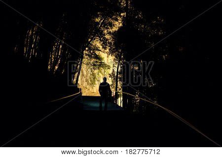 Night In A Wood With A Silhouette Of A Man