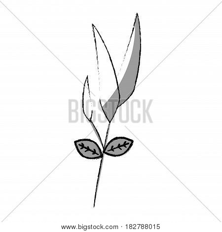 bamboo leafs isolated icon vector illustration design