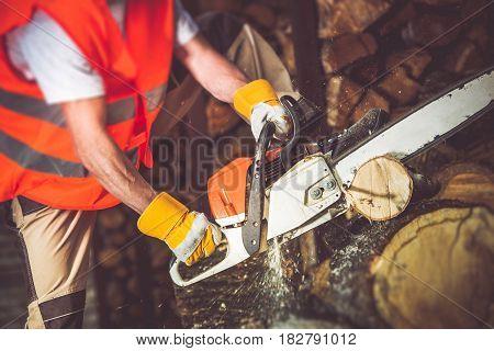 Worker Wood Cutting by Gasoline Saw. Preparing Firewood.