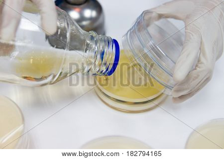 The Pour Plate method where in the sample is suspended in a petri dish