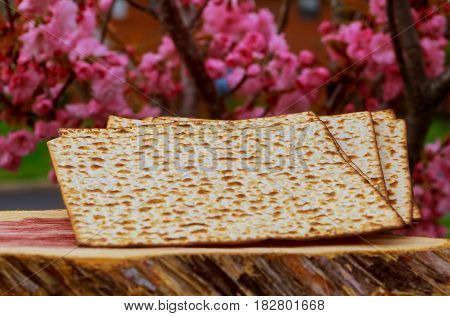 Pesah Celebration Concept Jewish Passover Holiday .