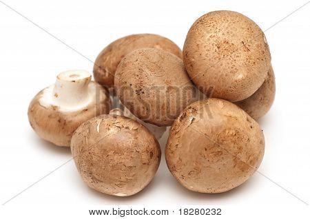 Portabella And Button Mushrooms
