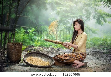 Beautiful girl winnowing rice separate between rice and rice husk