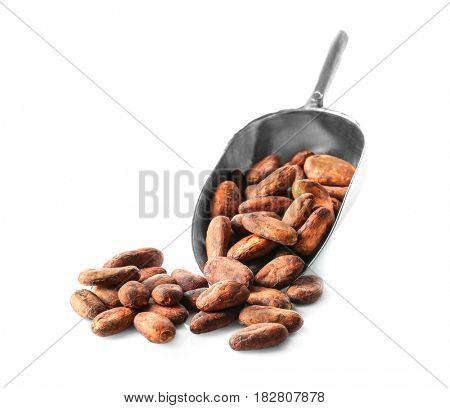 Metal scoop with aromatic cocoa beans on white background