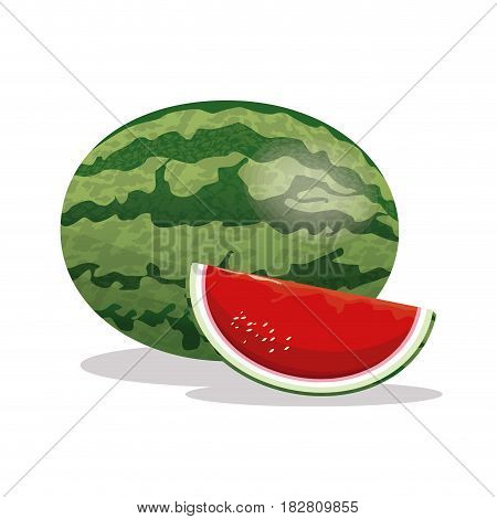 watermelon fruit fresh harvest vector illustration eps 10