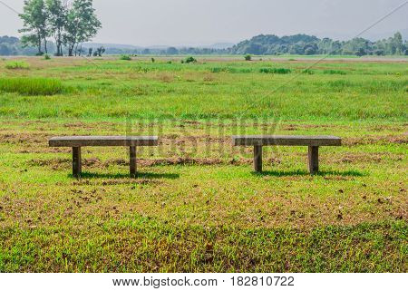Two Concrete Benches on Green Meadow .