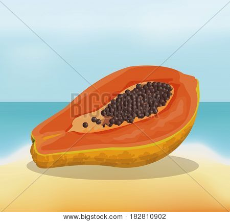 papaya fruit fresh harvest - beach background vector illustration eps 10