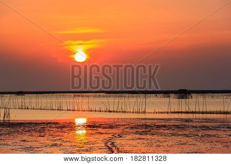 Fisherman wooden house and sea mussel farming along the sea coast at sunset Thailand