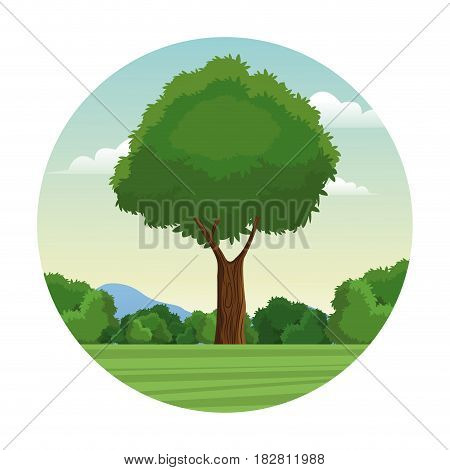 tree leafy forest landscape stamp vector illustration eps 10