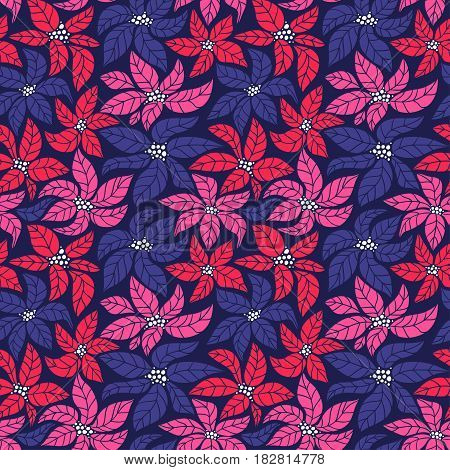 Seamless Christmas background with red blue and pink poinsettias. Vector illustration.