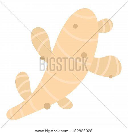 Fresh ginger icon flat isolated on white background vector illustration