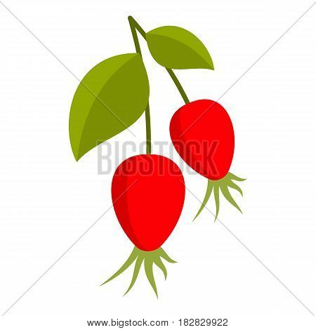 Ripe berries of a dogrose icon flat isolated on white background vector illustration