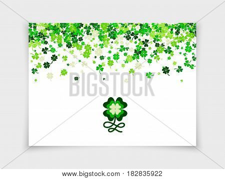 Four leafs clovers and shamrocks scattered on white paper background for Saint Patrick's Day. Vector illustration. Isolated