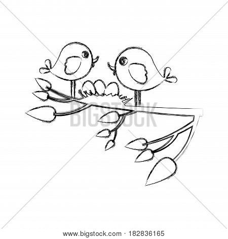 monochrome sketch of birds and nest in tree branch in closeup vector illustration