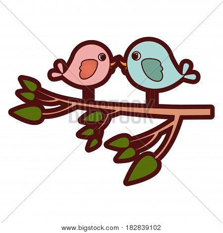 colorful thick silhouette with pair birds in tree branch vector illustration