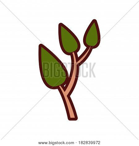 colorful thick silhouette of tree branch with leafs vector illustration