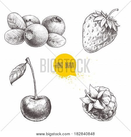 Hand drawn sketch style berries set isolated on white background. Raspberry strawberry cherry and blueberry. Healthy food vector illustration.