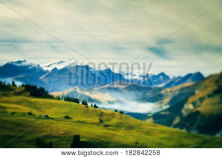 alpine landscape in the simmental valley. shot with a lensbaby tilt lens, so only the line between the camera and the biggest mountain peak is in focus.
