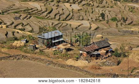 Farmhouse and rice terraces in the Annapurna Conservation Area Nepal.