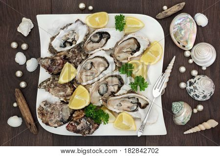 Fresh oysters on crushed ice on a square porcelain plate with pearls, lemon fruit, parsley, antique silver fork, driftwood and shells on old oak background.