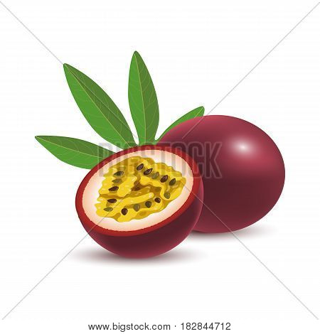 Isolated realistic colored whole and half of juicy purple passion fruit and green leaf with shadow on white background