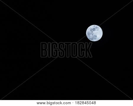 full moon look like rabbit on surface with clear sky image