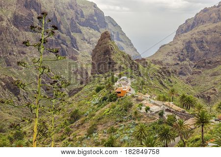 Panorama of Masca Tenerife. Tenerife Canary Islands Spain.