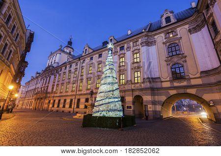 Christmas tree by University of Wrocław at night. Wroclaw Lower Silesian Poland.