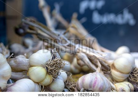Culinary. Garlic cloves are for sale .