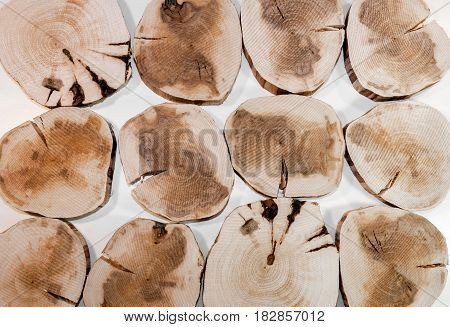 Several decorative interior alder wooden saw cuts colored by natural fungus on white background.