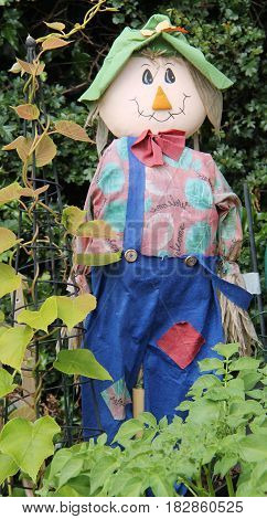 A Craft Made Rag Doll Scarecrow Garden Ornament.