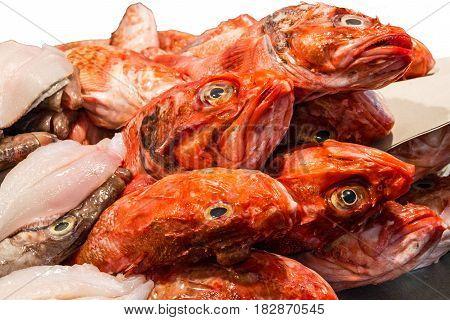 fish food on ice sea market. Seafood