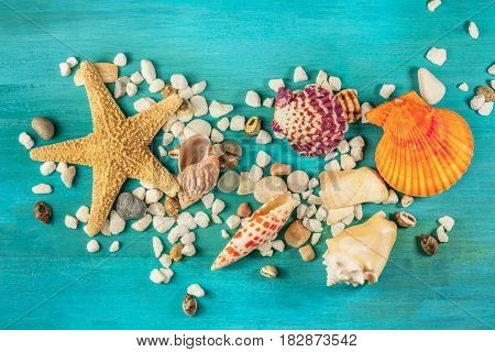 An overhead photo of a sea star, sea shells, and pebbles on a vibrant turquoise background, a design template for a summer vacation banner